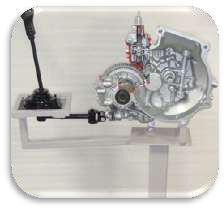 Cut section Model Of Gear Box