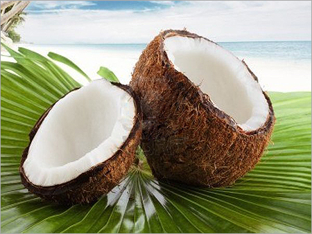 Coconut Seeds