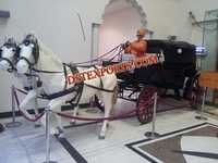 INDIAN WEDDING DECORATION HORSE BAGHI