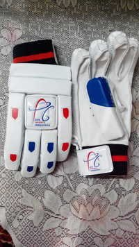 APG BROWNY Cricket Batting Gloves