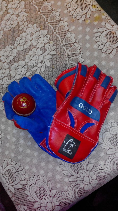 APG WICKET KEEPING GLOVES GOLD