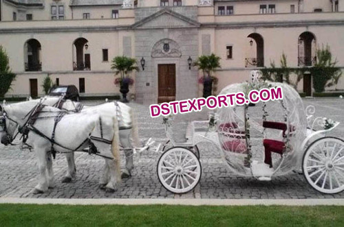 English Wedding Cinderala Horse Carriage