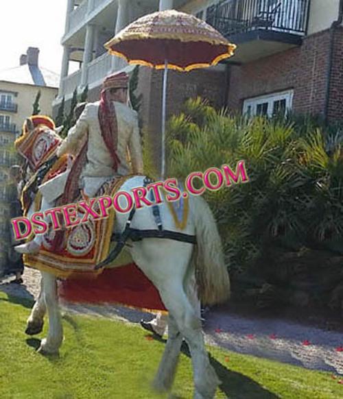 INDIAN BARAT HORSE DRESS