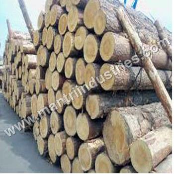 Southern Yellow Pine Logs