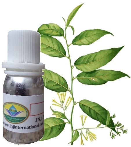 Ratrani Perfume Oil