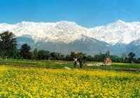Kangra and Uttrakhand Himalayas