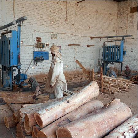 Raw Timber Wood Logs