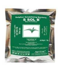 S-Sol B