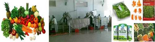 FRESH VEGETABLE PROCESSING PLANT & MACHINERY