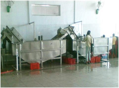Fruit Washing / Inspection / Elevation Machine