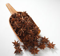 Badiyan Flower-Star Anise