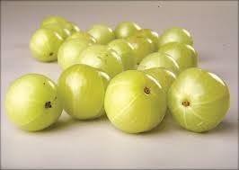 Natural Amla Extract / Gooseberry extract