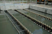 Centralized Sewage Treatment Plant