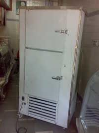 Vertical Deep Freezer 300L