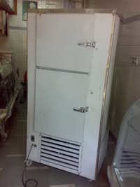 Vertical Deep Freezer 300L