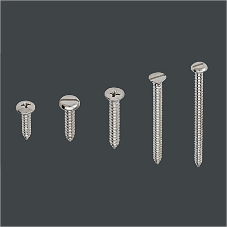 SS Wood Screw