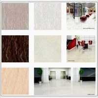 Domestic Vitrified Floor Tiles