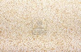 Hulled Sesame Seeds Suppliers