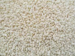 Indian White Sesame Seeds Specification