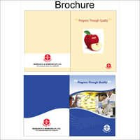 Institute Brochure Printing Service