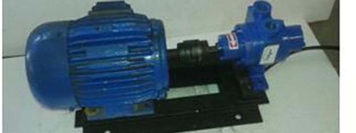 LPG Rotary Vane Pump