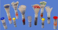 BIO MEDICAL PRODUCTS