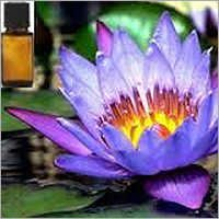 Blue Lotus Attar