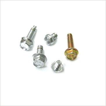 Bolts and Flanges