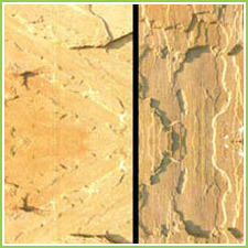 Indian Sandstone Floor Tiles
