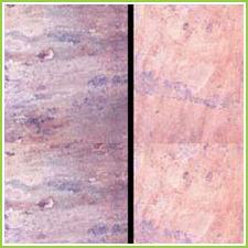 Sandstone Designs