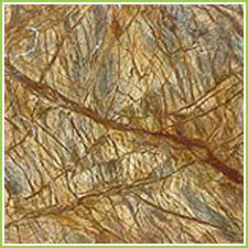 Rainforest Marble Tiles