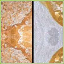 Slate Stone Marble