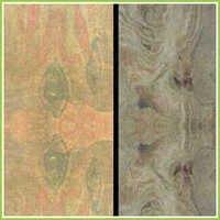 Slate Stone Patterns