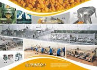 Apricot Processing Machine