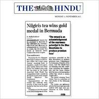 Gold Medal in Bermuda