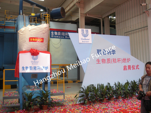 Direct Biomass Fired Hot Air Furnace