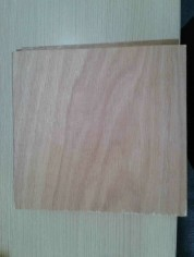 Okume Plywood