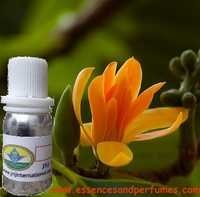 Musk Flora Fragrance Oil