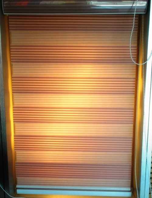 Window Zebra Blinds