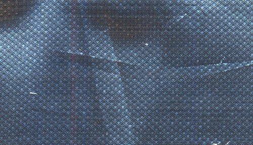 Rimzim Gota Raidana Fabrics