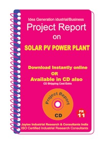 Project Report On Solar Pv Power Plant