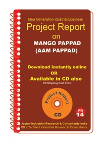 Project Report On Mango Pappad (Aam Pappad)