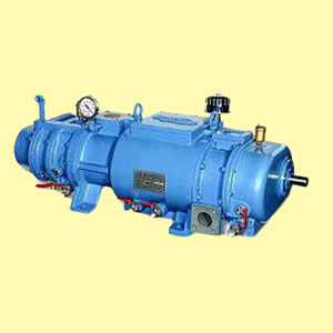 Screw Dry Vacuum Pumps