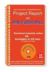 Project Report on Mini Flour Mill