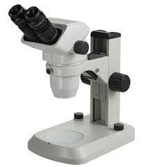 Zoom Stereoscopic Microscope