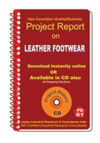 Project Report On Leather Footwear