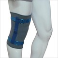 Hinge Knee Support