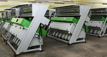 Red Rice Sorting Machine