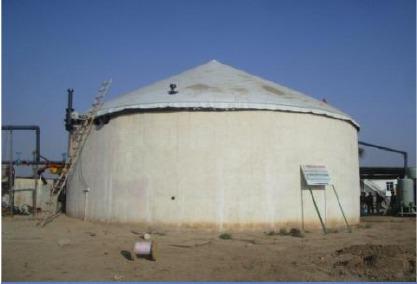 Biogas Electricity Plant