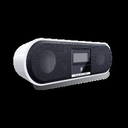 IBall Speakers (With Usb/Sd/Fm)